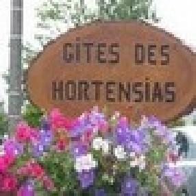 Les HORTENSIAS Pleyben